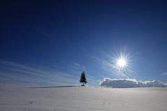 真冬も終わりに