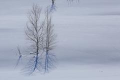冬景色 終幕