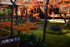 建仁寺・潮音庭の冬1