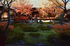 建仁寺・潮音庭の冬3