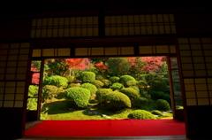 安楽寺・額縁庭園 左