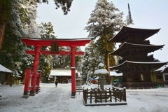 若一王子神社・雪の境内