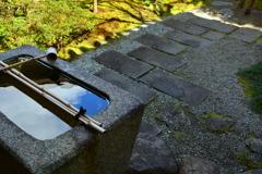 圓徳院・小庭園