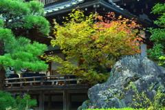 松尾大社・社務所前の秋