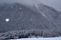 信州雪景色4