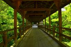 東福寺・偃月橋4