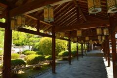 萬福寺回廊の新緑2
