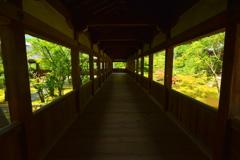 清涼寺回廊・夏3