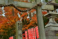 宗像神社の初冬
