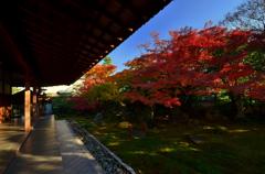 達磨寺庭園