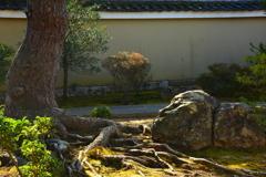 妙心寺天球院・庭園