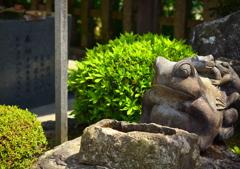 西院春日神社・一願蛙2