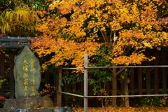 梨木神社の初冬