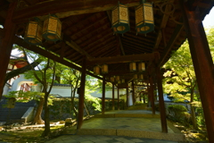 萬福寺回廊の新緑1