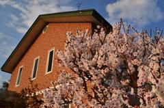 梅の香漂う家