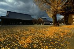 西本願寺境内と冬の空