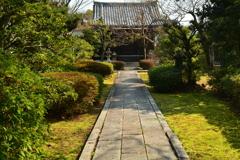 養源院・庭園