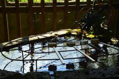 竈神社・手水舎の夏