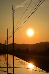 高原の春・早朝散歩3