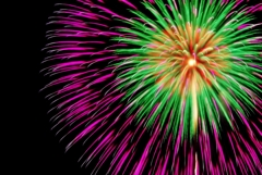 Fireworks (2019高瀬川納涼大花火大会③)