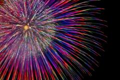 Fireworks (2019高瀬川納涼大花火大会②)