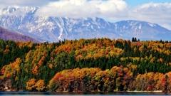 秋色の頃*