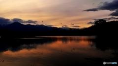 安曇野夕景 (遊水池)