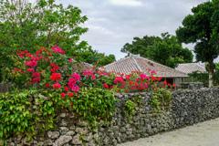 沖縄の古き風情を残す竹富島2