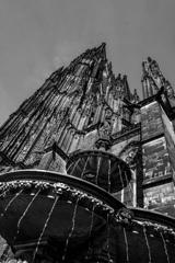 BW見上げる世界 ケルン大聖堂3@ケルン