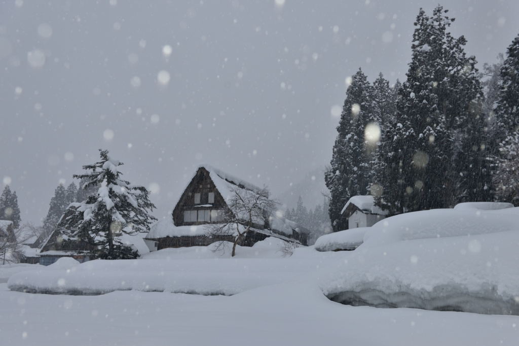 耳すます しんしんと降る 雪のおと