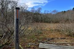 天生の高層湿原植物群落と伝説
