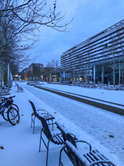 雪の朝・・・@ドレスデン