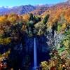 爽快! 秋の白水の滝!