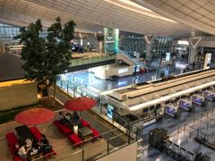静かにお茶・・・はねだ 羽田空港第三ターミナル(国際線ターミナル)