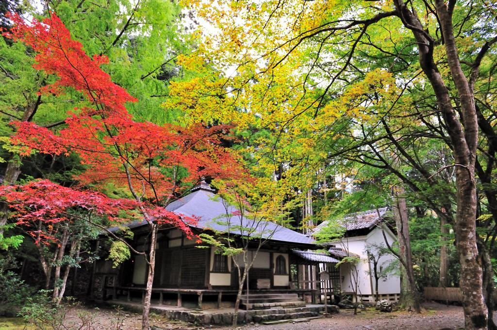 京都 三尾巡り 世界遺産 栂尾山高山寺Ⅵ