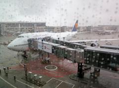 雨のフランクフルト国際空港
