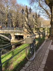 DUS散策 自転車のある水辺の風景@デュッセルドルフ・シュタットミッテ