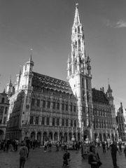 BW見上げる世界 朝陽に聳えるブリュッセル市役所(グランプラス)@ブリュッセル