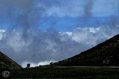 雲上の散歩道