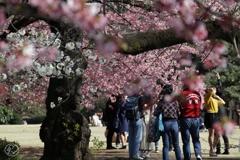 楽しい春の訪れ