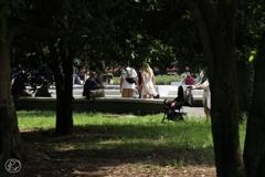 木陰のある公園