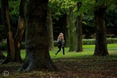 公園の魔女
