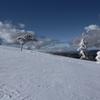 雪原の風やむ