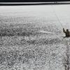 秋を釣る-4
