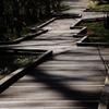 木道、稲妻型
