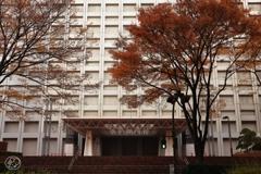 西新宿の紅葉