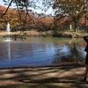 公園の秋 -9