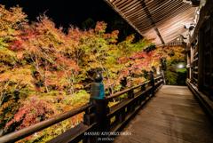 Autumn colors light up ③