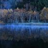 静寂~木戸池の夜明け