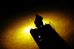 集魚灯に輝く水面に目を凝らしてチャンスを待つ